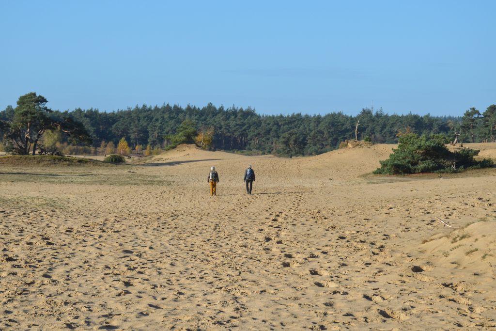 Winterwandeling Wekeromse Zand