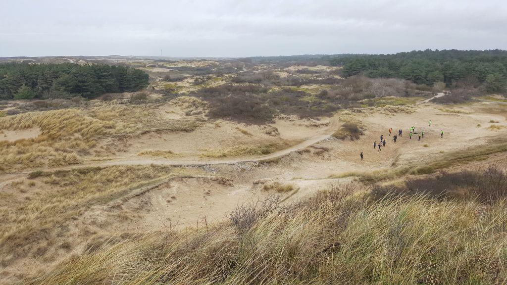 De duinen bij Noordwijk