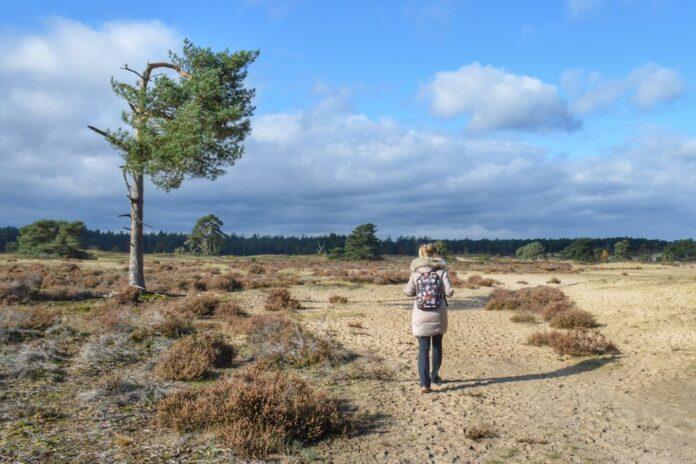 wandelgidsen Nederland