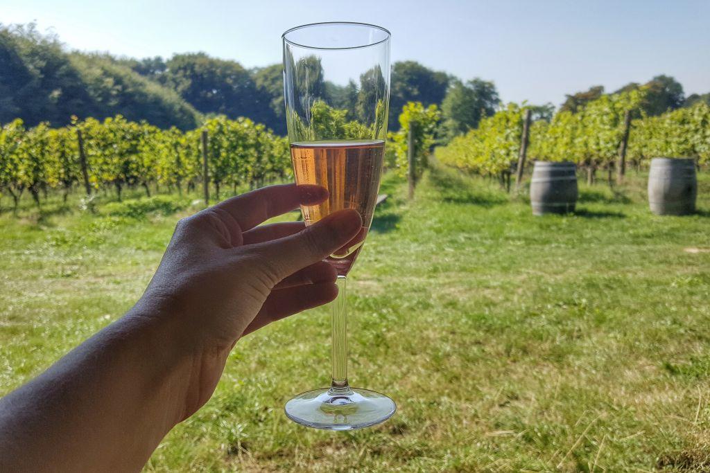Wagenings Wijngoed