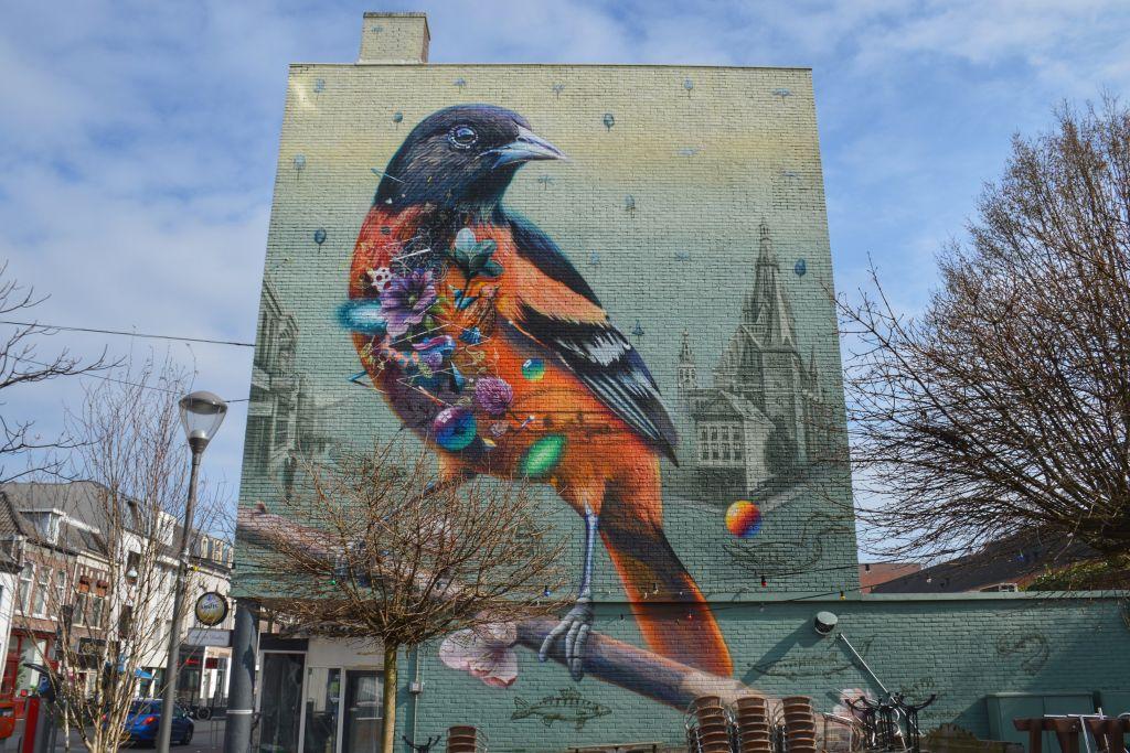 Muurschildering Nijmegen