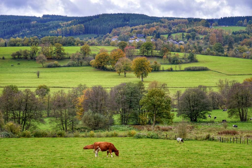 Leuke bestemmingen kampeervakantie: de Ardennen