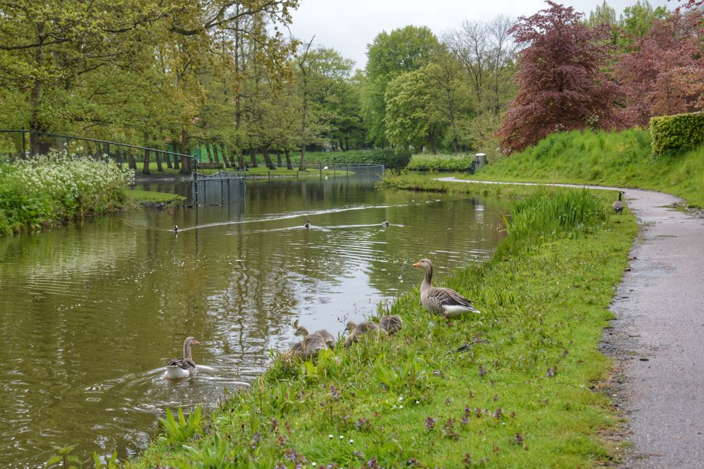 Julianapark Hoorn