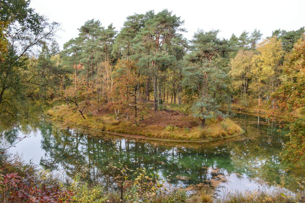 Uitzicht Landgoed Heidestein